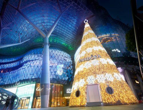 ห้ามพลาด! 5ที่เที่ยว สุดชิคช่วงเทศกาลคริสต์มาสในสิงคโปร์